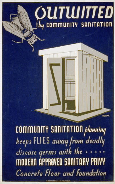 Outwitted by community sanitation