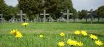 Neuville Saint Vaast German Cemetery